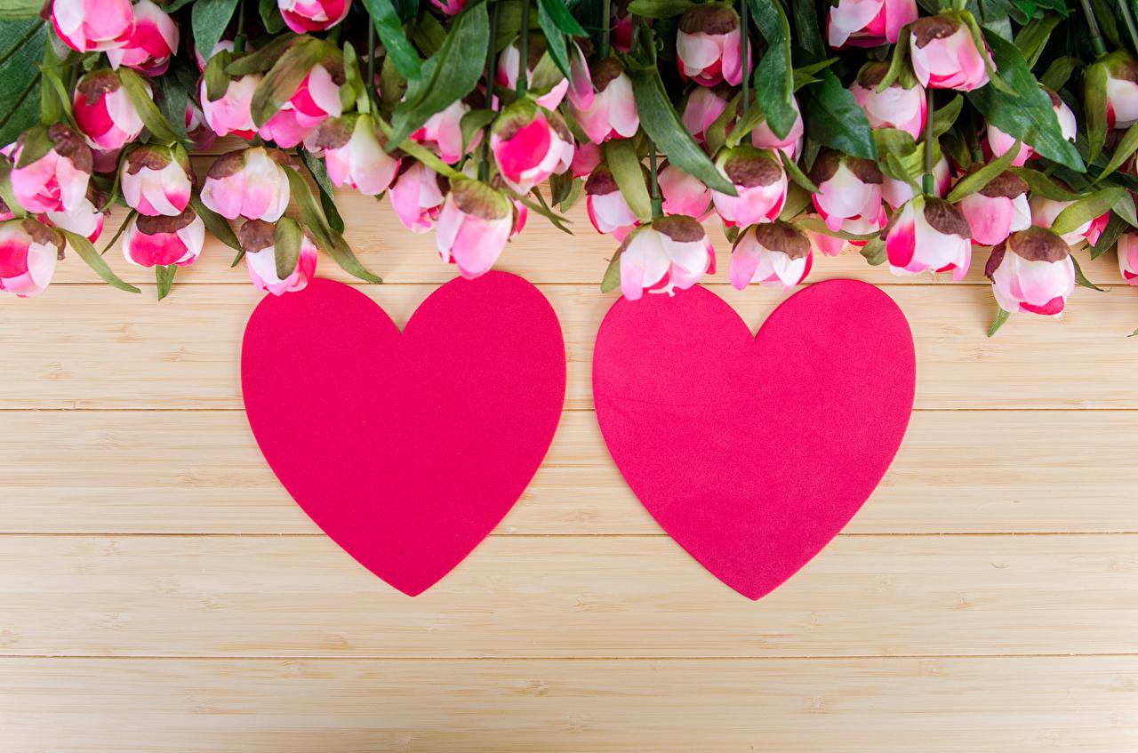 Bilder Valentinstag Herz Zwei Rosen Blumen Bretter 2
