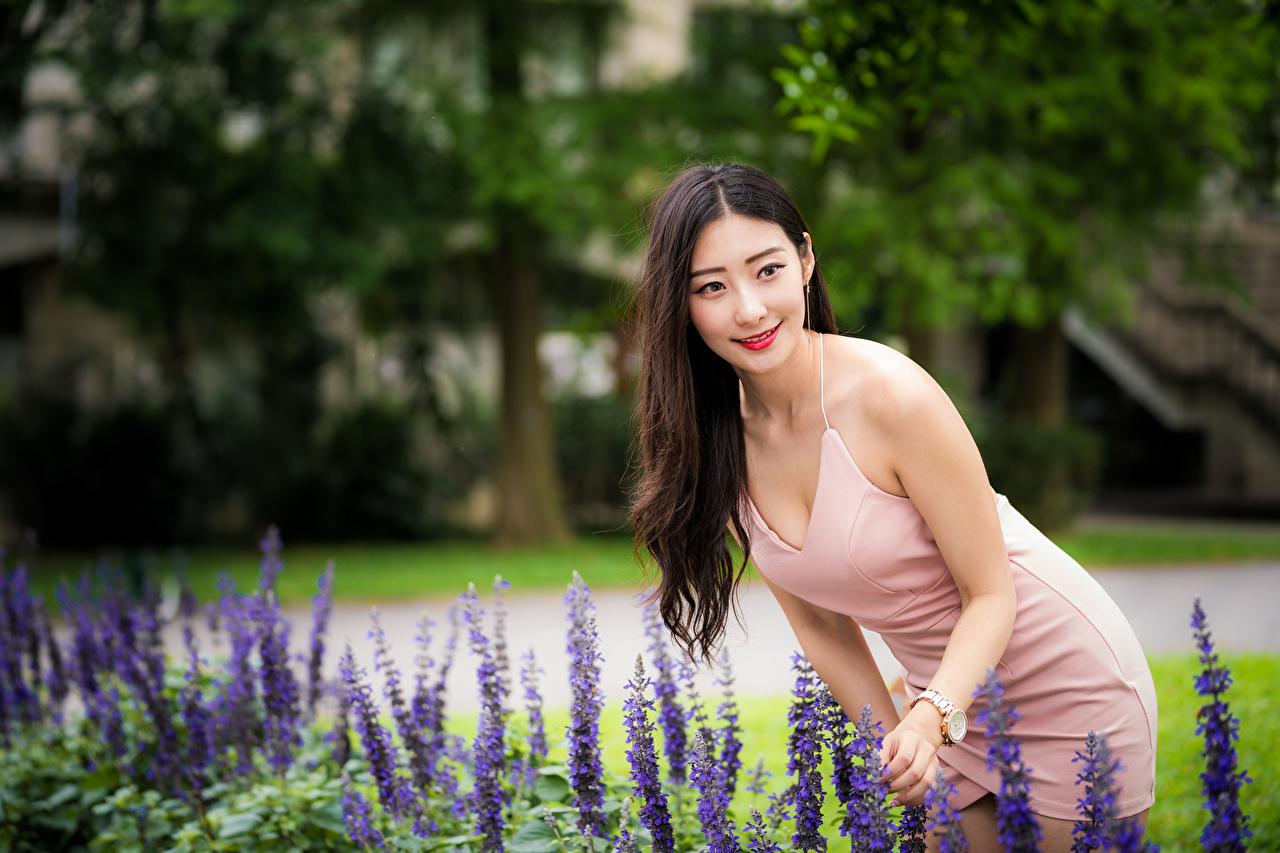 Foto Lächeln Bokeh junge frau asiatisches Kleid unscharfer Hintergrund Mädchens junge Frauen Asiaten Asiatische