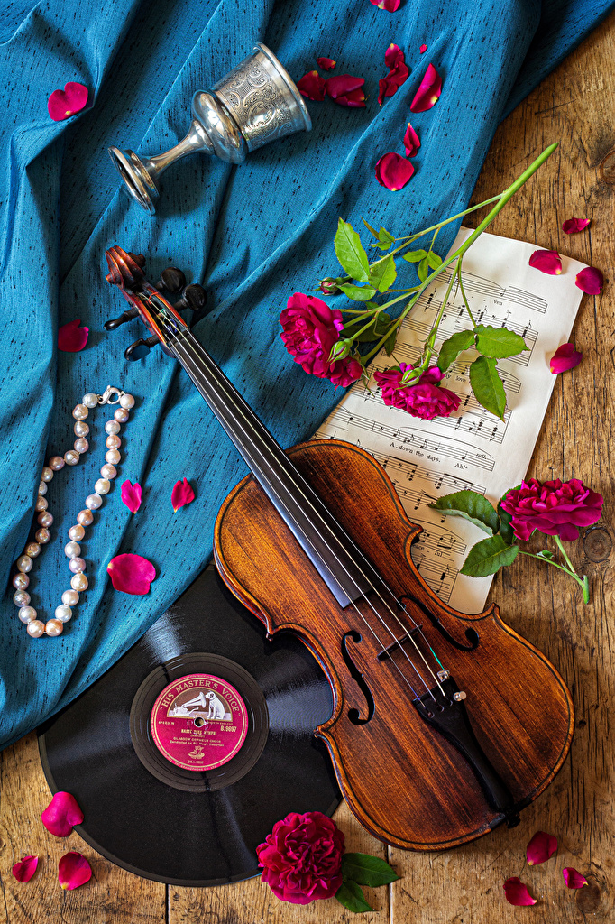 Photo Violin Notes Roses Petals Flowers Stemware Still-life Jewelry  for Mobile phone rose flower