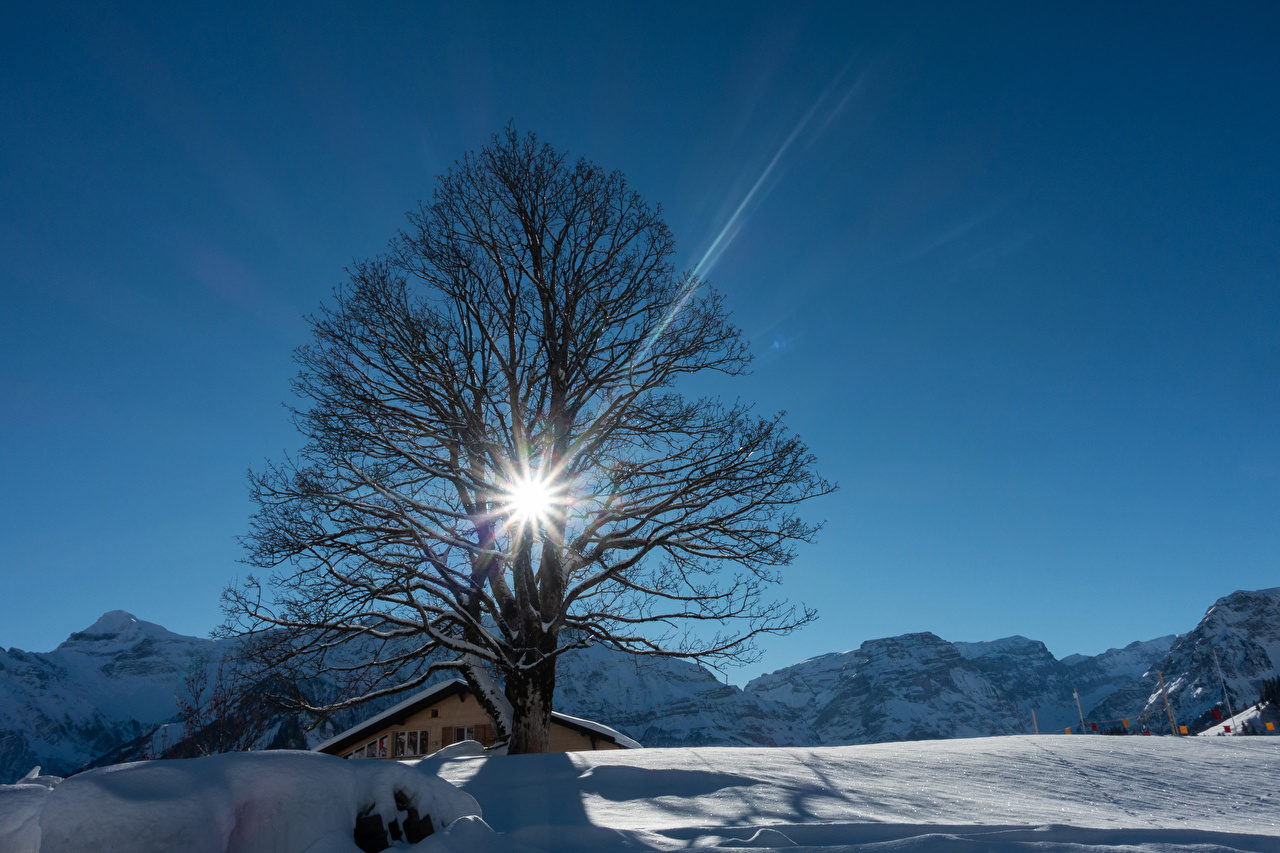 Pictures Rays of light Switzerland Braunwald Winter Nature mountain Snow Trees Mountains