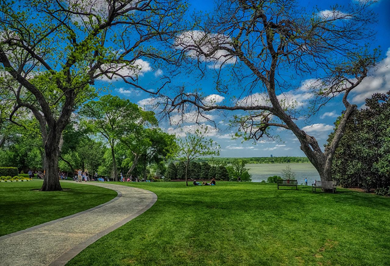 Hintergrundbilder Texas Vereinigte Staaten Dallas Natur Park Rasen Bäume USA