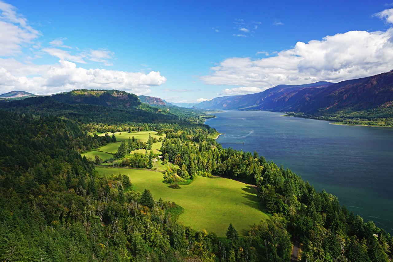 Fotos Vereinigte Staaten Columbia River Gorge Natur Hügel Himmel Wälder Grünland Landschaftsfotografie Fluss USA Wald Flusse