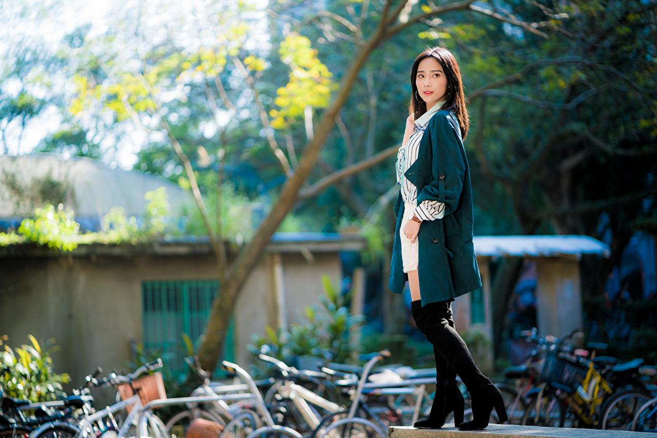 Bilder unscharfer Hintergrund posiert junge frau Asiatische Blick Bokeh Pose Mädchens junge Frauen Asiaten asiatisches Starren