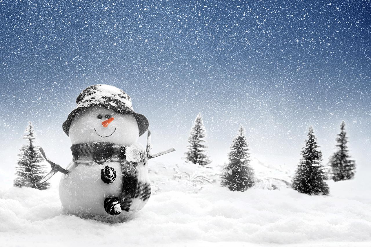 壁紙 季節 冬 雪 雪だるま トウヒ属 帽子 雪の結晶 自然