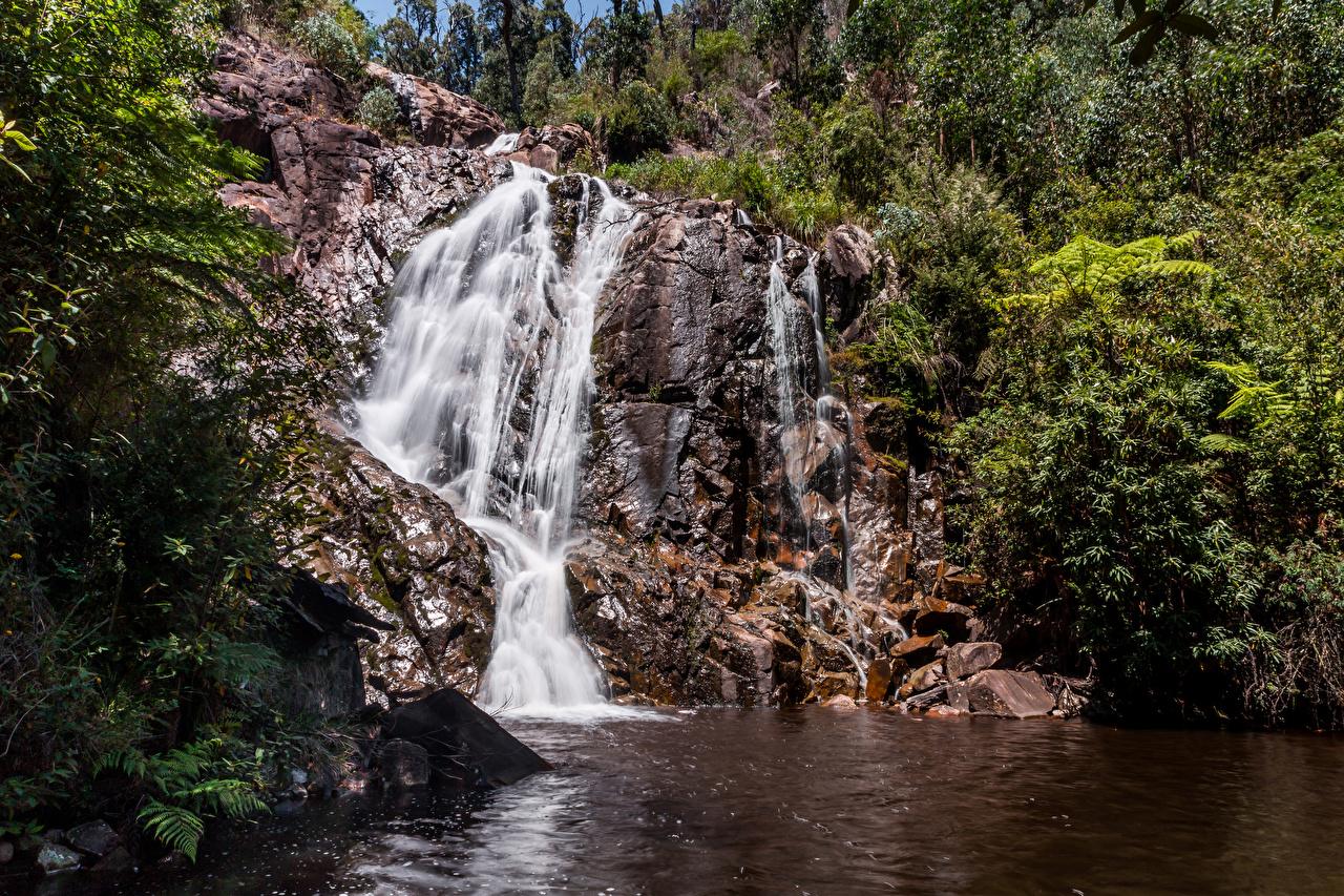Australia Melbourne Parque Cascadas Roca parques, salto de agua, acantilado Naturaleza