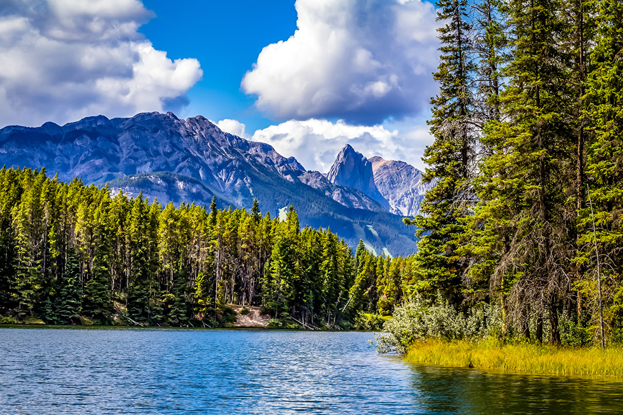 Photo Banff Canada Johnson Lake Nature Mountains Parks Forests Trees mountain park forest