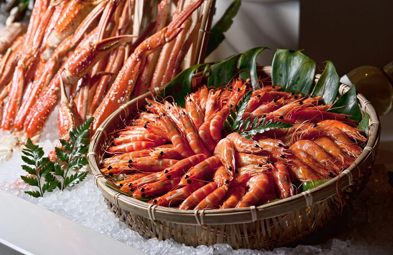 Camarão Muitas comida, camarões Alimentos