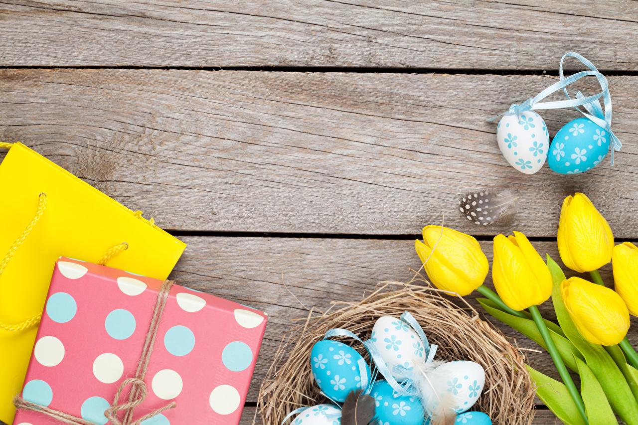 Bilde Påske egg Gul Et rede tulipanslekta Gave blomst Mat Treplanker Egg Tulipaner Blomster
