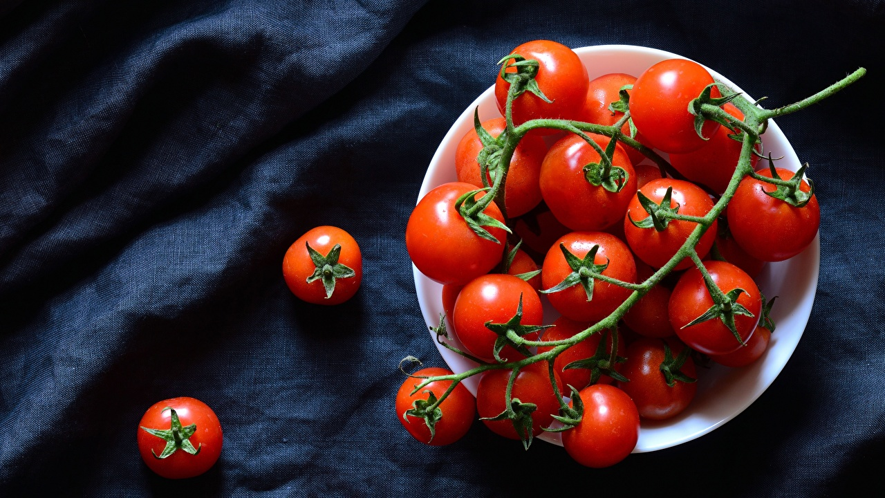 Photo Woven fabric Tomatoes Food Plate Branches Cloth