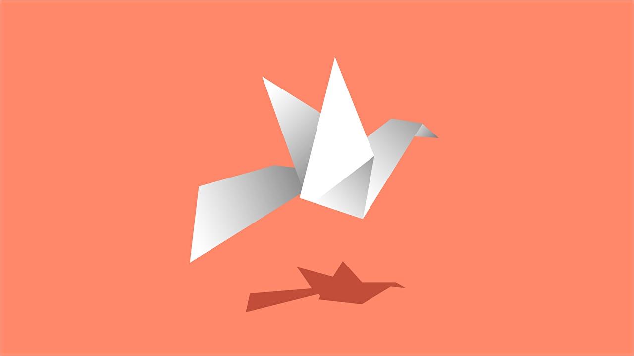 Bilder von Vogel Schatten Origami Papier Farbigen hintergrund Vögel