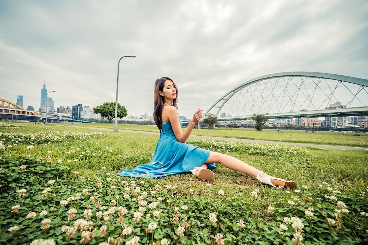 Bilder Mädchens Asiatische Gras Sitzend Kleid junge frau junge Frauen Asiaten asiatisches sitzt sitzen