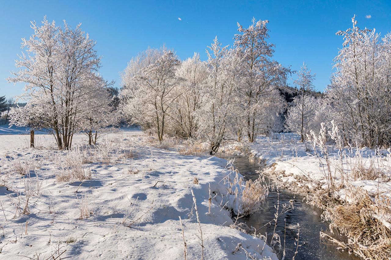 Alemania Invierno Ríos Rheinland-Pfalz Nieve árboles río Naturaleza