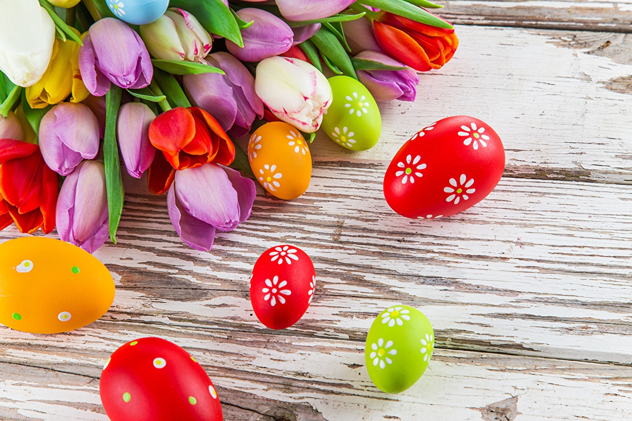 Pictures Easter egg tulip flower Holidays Eggs Tulips Flowers