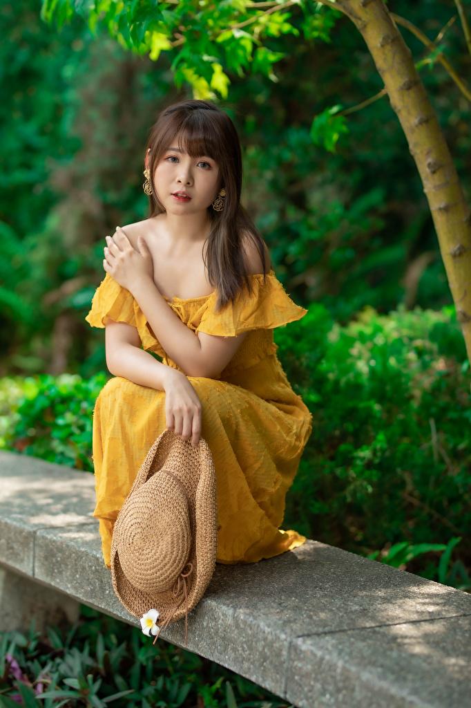 Desktop Hintergrundbilder Der Hut Mädchens asiatisches Sitzend Starren Kleid  für Handy junge frau junge Frauen Asiaten Asiatische sitzt sitzen Blick