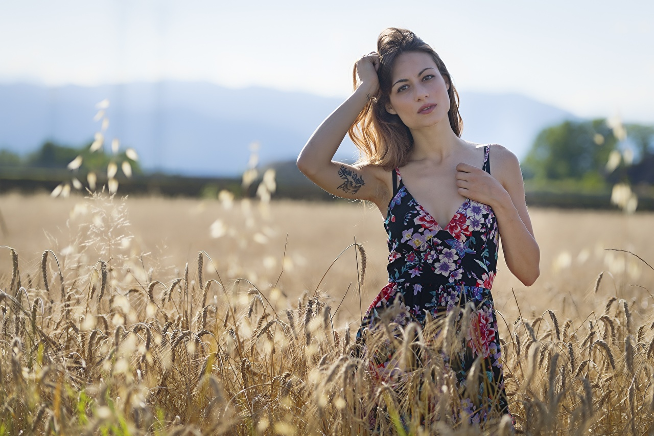 Images Tattoos Brown haired Bokeh Girls Fields Ear botany Hands Staring frock blurred background female young woman spike spikes Glance gown Dress