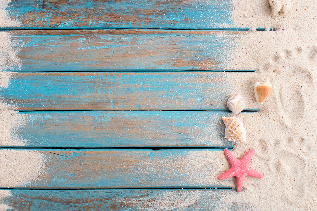 Images Starfish Footprints Sand Shells Template greeting card Wood planks sea stars boards