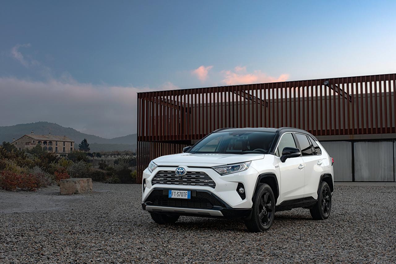 Bilder Toyota SUV 2019 RAV4 Hybrid Style Worldwide Hybrid Autos Weiß Autos Metallisch Sport Utility Vehicle