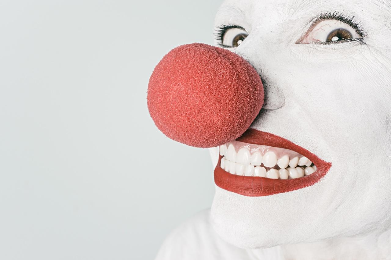 Foto Clown Nase Gesicht Blick Rote Lippen clowns Starren