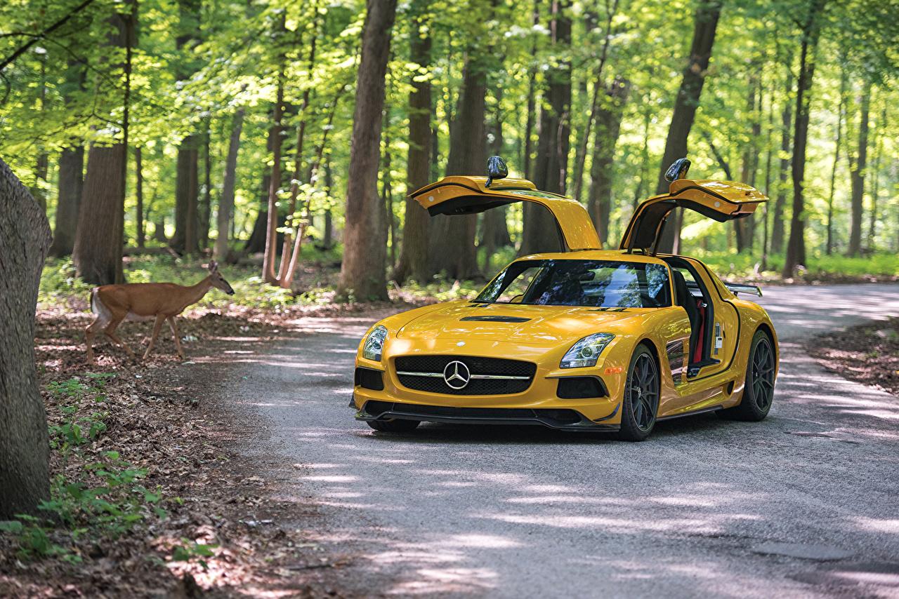 Picture Mercedes-Benz 2013-16 SLS 63 AMG Black Series Yellow Cars Metallic auto automobile