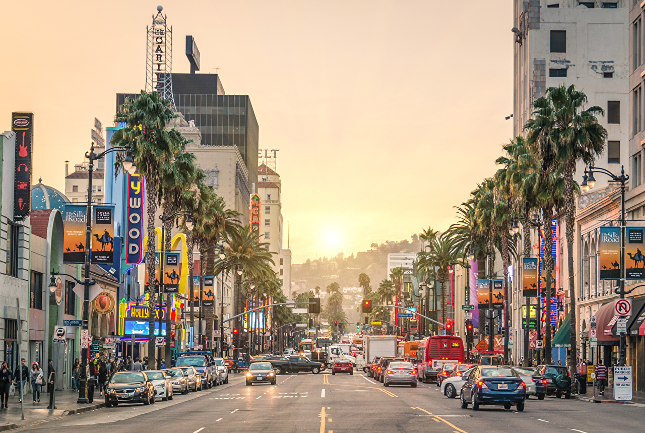 Image California Los Angeles USA Sunset Street Roads palm trees sunrise and sunset Street lights Cities Palms Sunrises and sunsets
