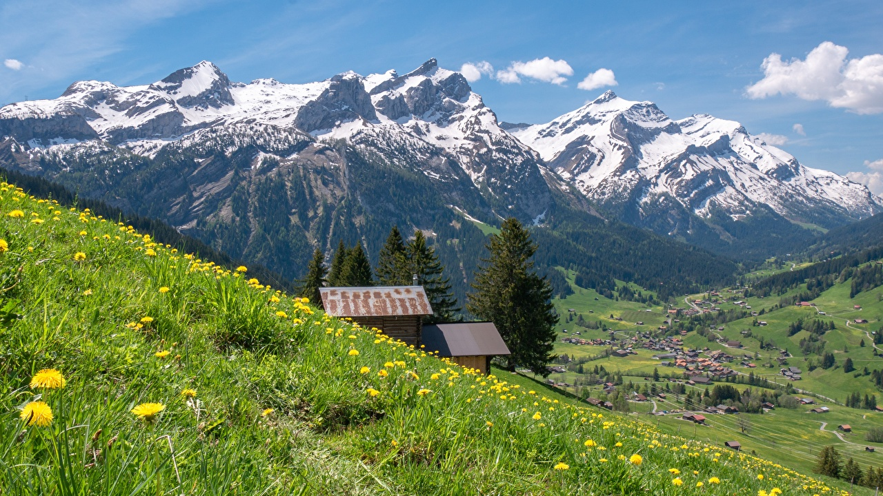 Picture Switzerland Bernese Alps Nature mountain Grasslands Grass Mountains Meadow