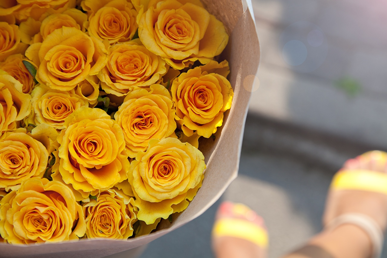 Pictures Bouquets Roses Yellow Flowers bouquet rose flower