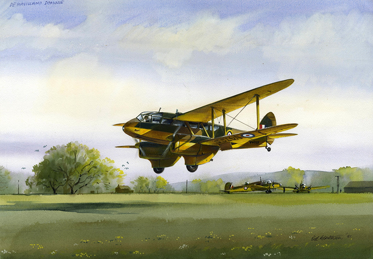 Pictures Airplane DH Dominie (DH 89 Dragon Rapide) Painting Art Aviation