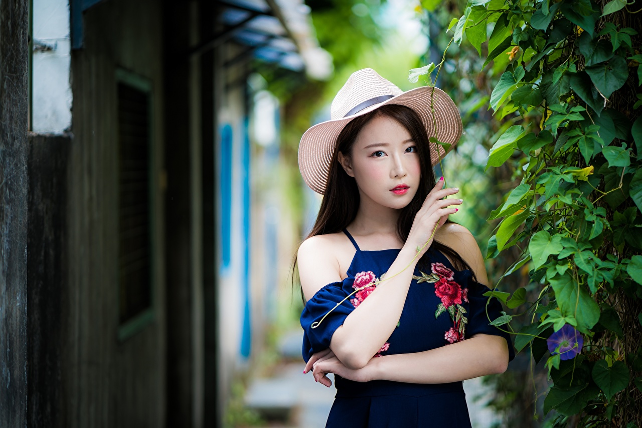 Images Brunette girl Bokeh Hat young woman Asiatic Hands Bush Staring blurred background Girls female Asian Shrubs Glance