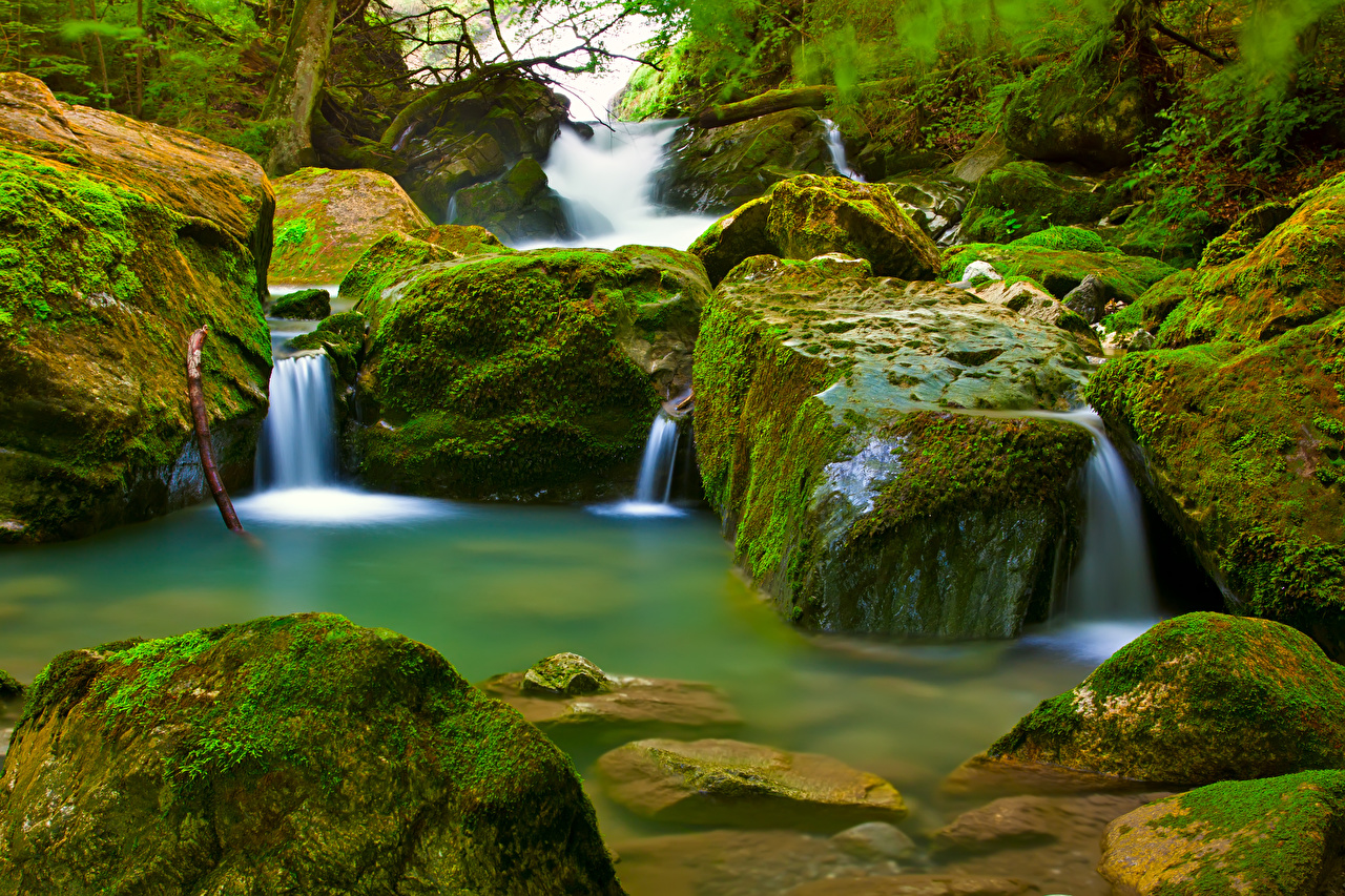 Photos Stream Nature Moss stone Creek brook Creeks Streams Stones
