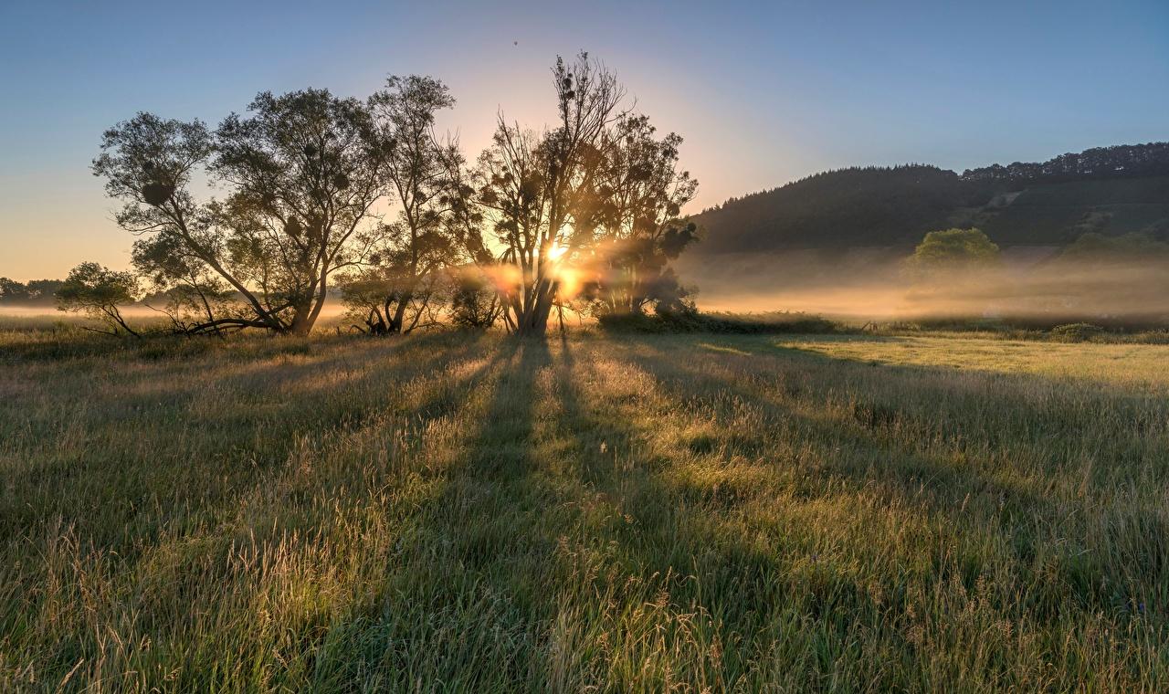 Bilder Deutschland Moselle Valley Natur Morgen Felder Morgendämmerung und Sonnenuntergang Bäume Acker Sonnenaufgänge und Sonnenuntergänge