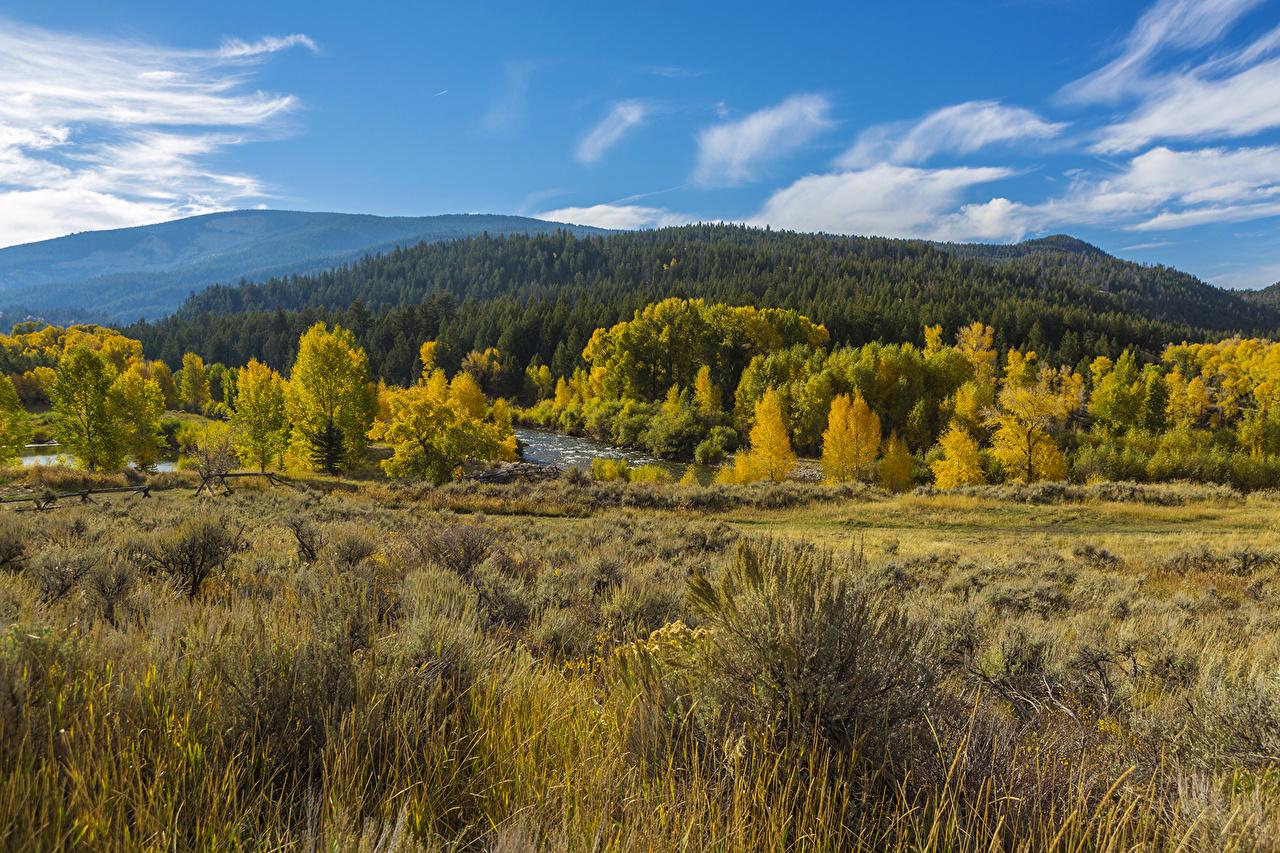foto de Fonds d'ecran Saison Automne Parc USA Montagnes Forêts ...