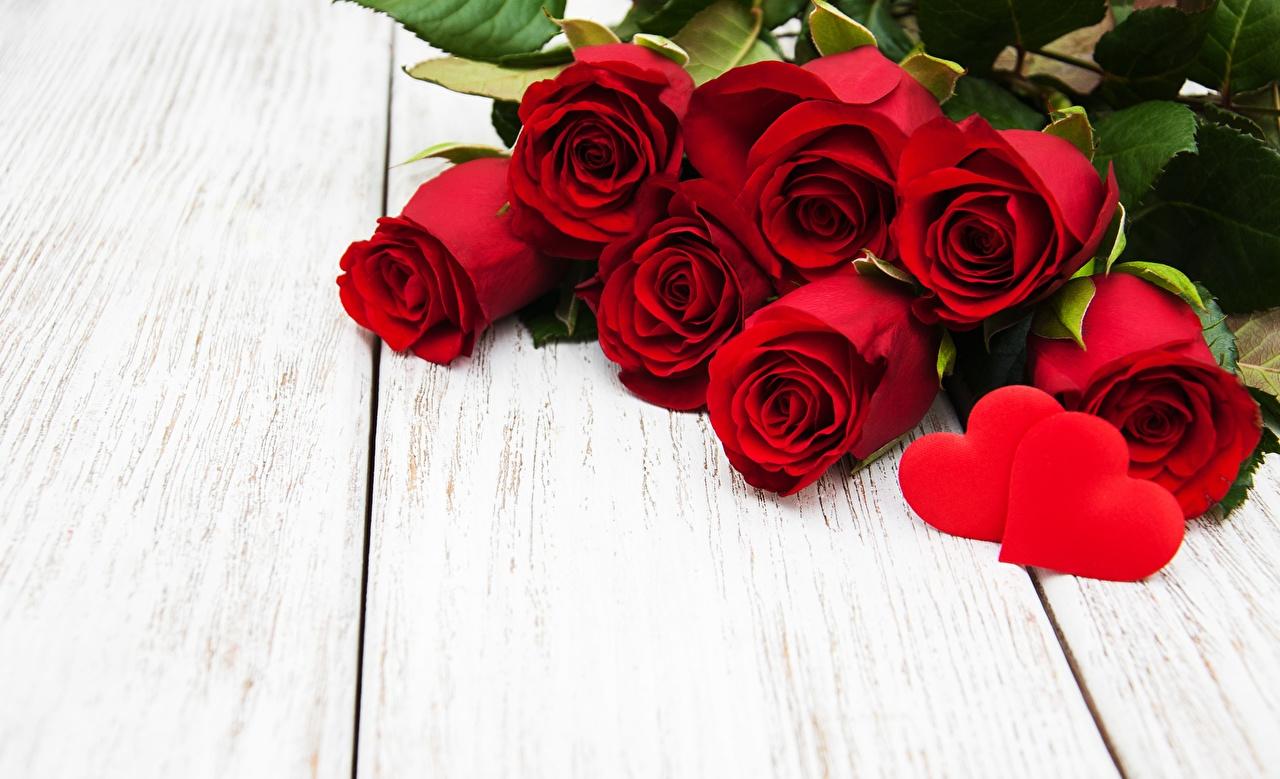 Fotos von Valentinstag Herz Rot Blüte Vorlage Grußkarte Bretter Blumen