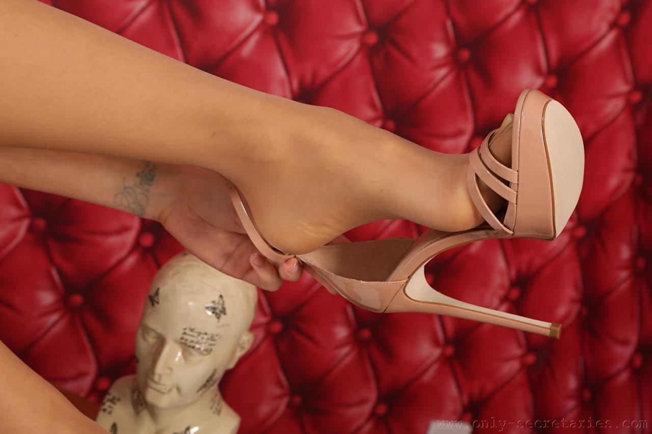 Fotos von Tätowierung Strumpfhose Mädchens Bein Großansicht Stöckelschuh junge frau junge Frauen hautnah Nahaufnahme High Heels