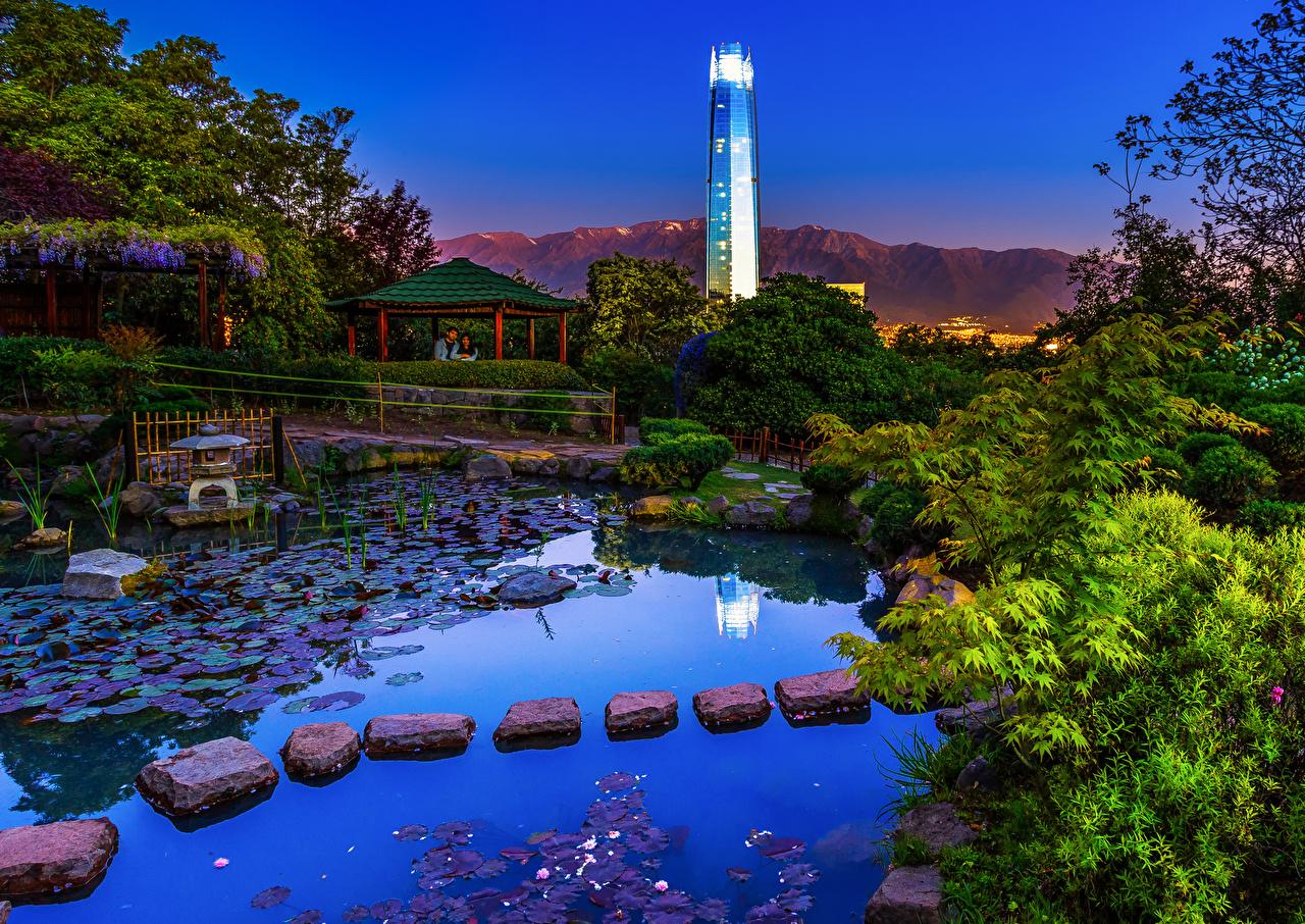 Photos Chile Santiago Japanese Garden Nature Pond Gardens Stones Evening Shrubs Bush