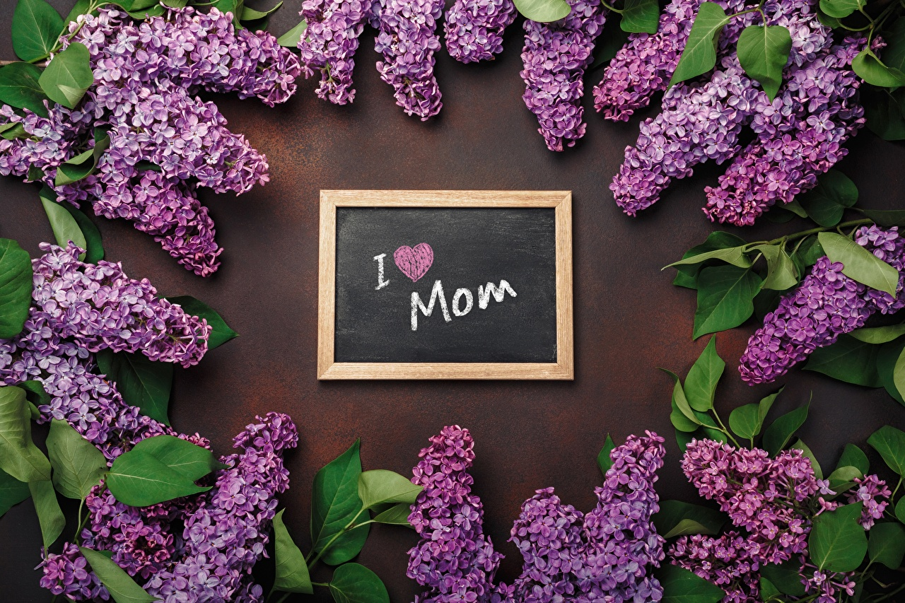 Image Mother's Day English text Lilac Flowers flower Syringa lettering Word - Lettering
