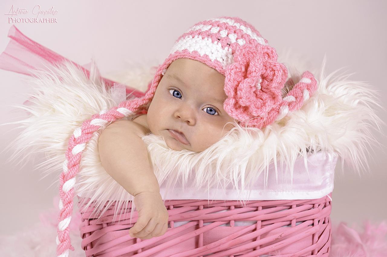 fonds d 39 ecran petites filles b b chapeau d 39 hiver panier. Black Bedroom Furniture Sets. Home Design Ideas