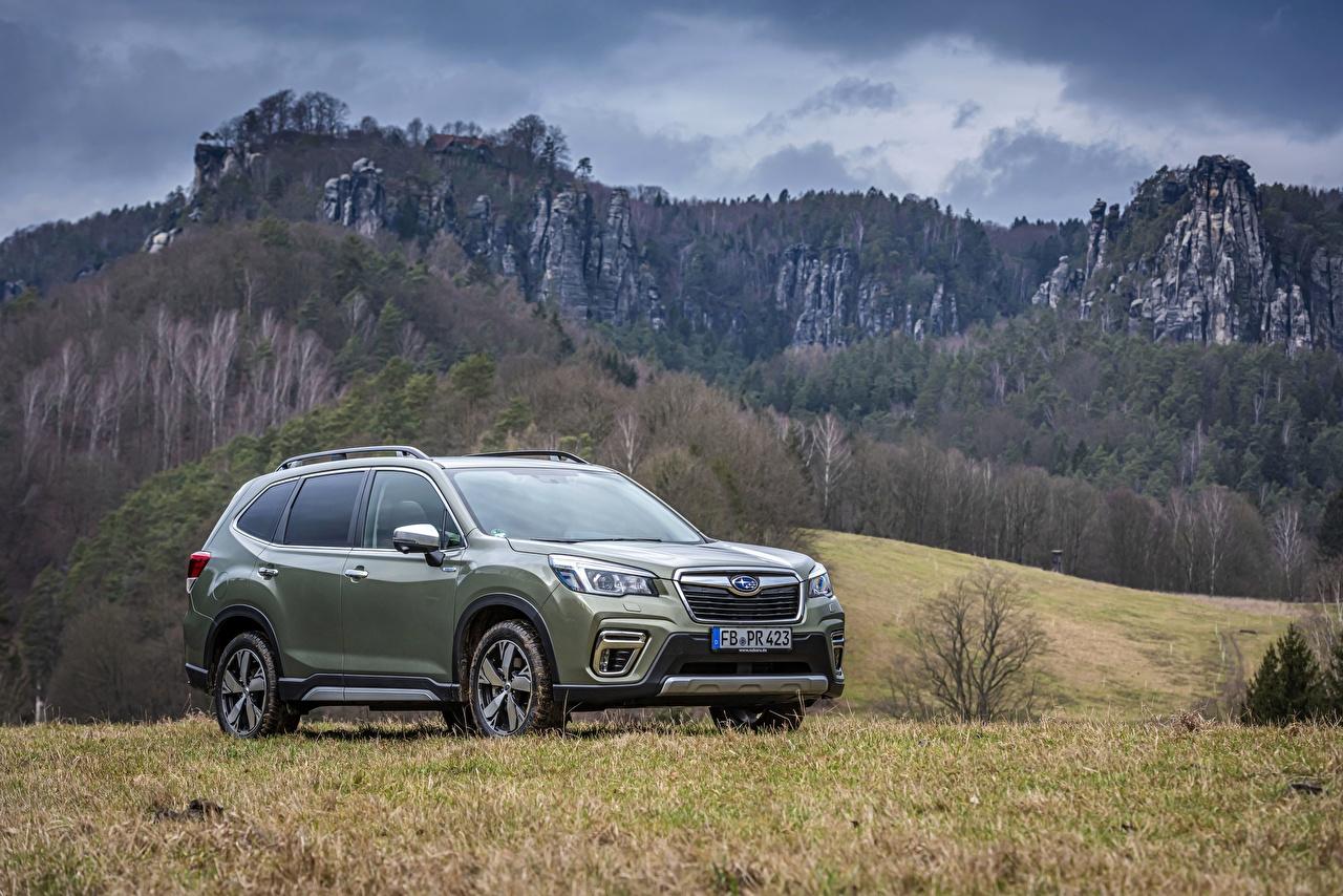 Fotos Subaru Softroader Forester, 2019 Berg Autos Metallisch Crossover Gebirge auto automobil
