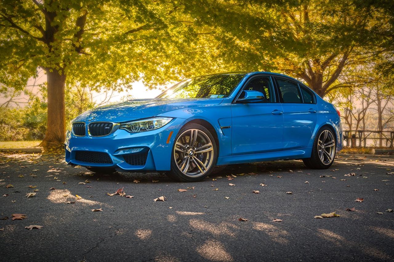 Picture BMW Sedan Light Blue Cars auto automobile