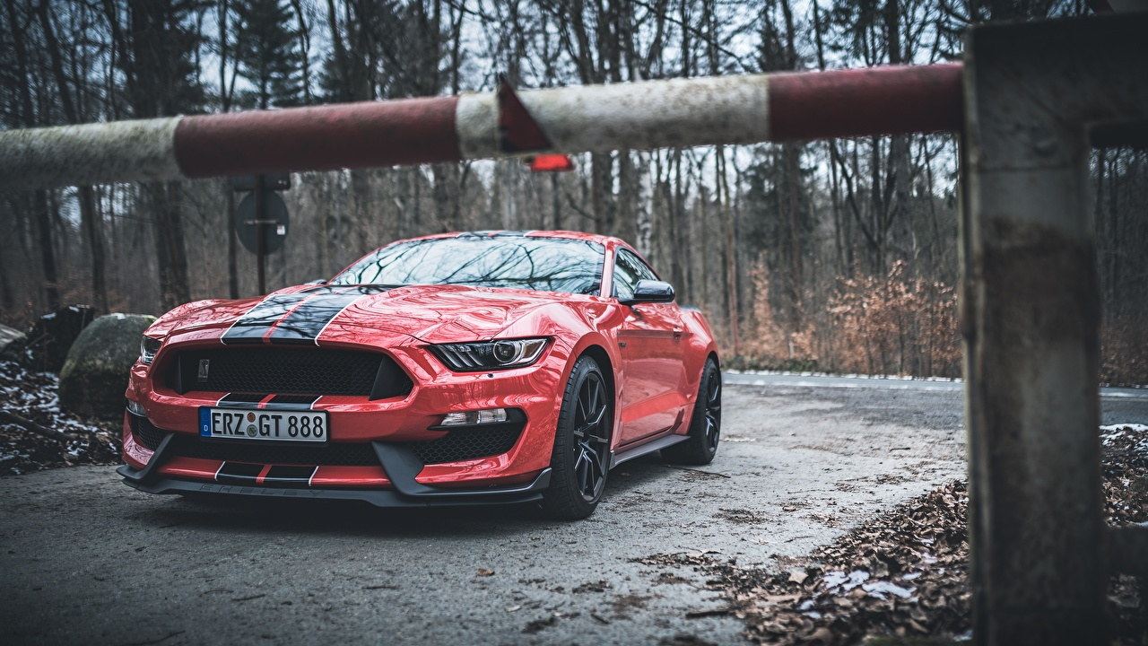 Pictures Ford Mustang Shelby GT350 Red Stripes automobile Cars auto