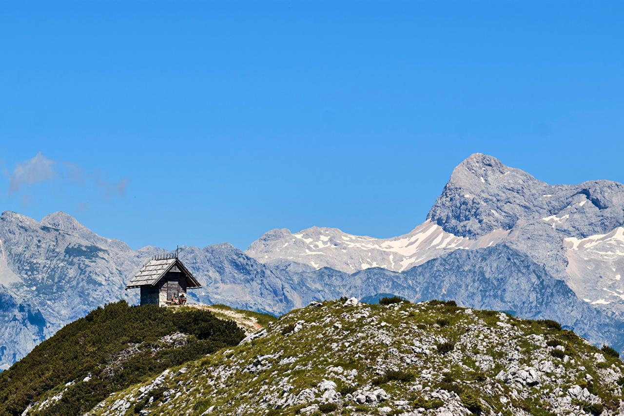 Foto Slowenien Vogel Natur Gebirge Berg