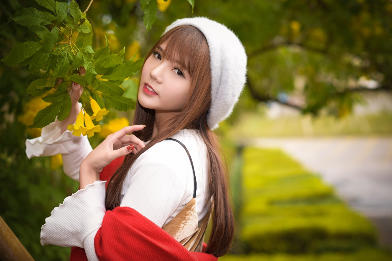 Wallpaper Foliage Brown haired blurred background Beret young woman Asiatic Hands Branches Staring Leaf Bokeh Girls female Asian Glance