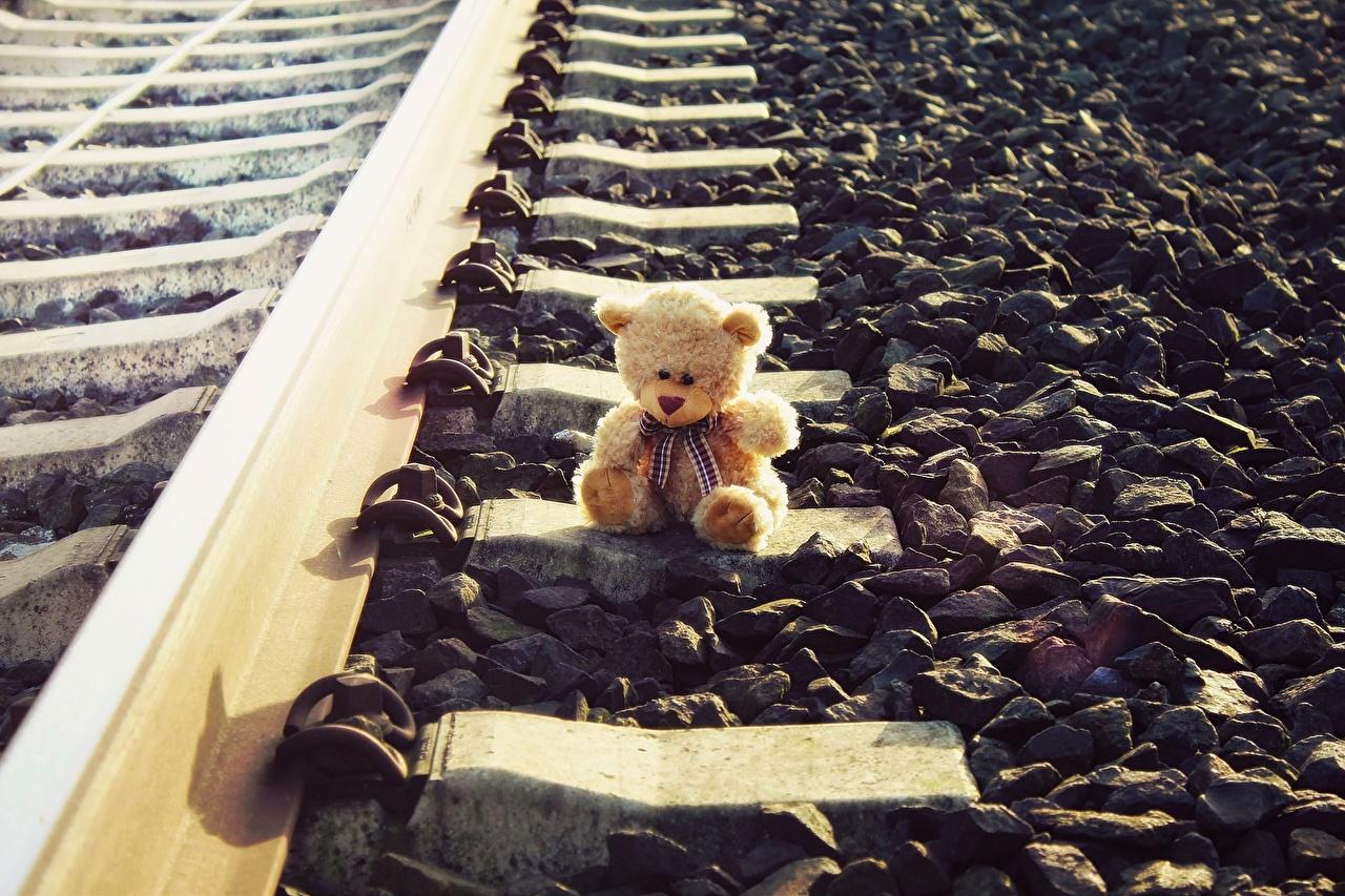 Picture Rails Teddy bear Stones Railroads stone