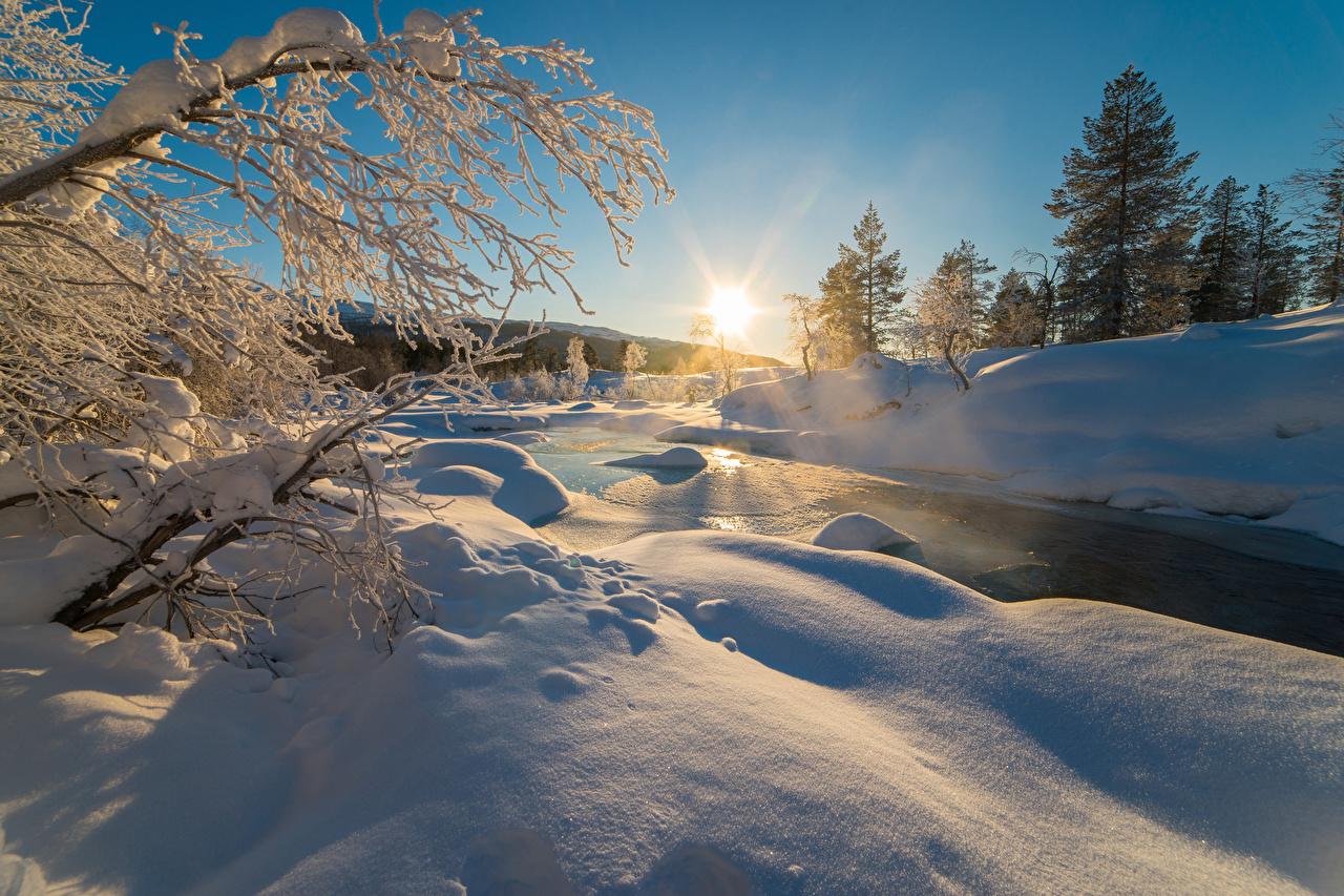 Foto Natur Winter Schnee Sonnenaufgänge und Sonnenuntergänge Ast