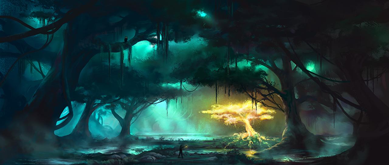 Bilder von Fantasy Sumpf Fantastische Welt Bäume