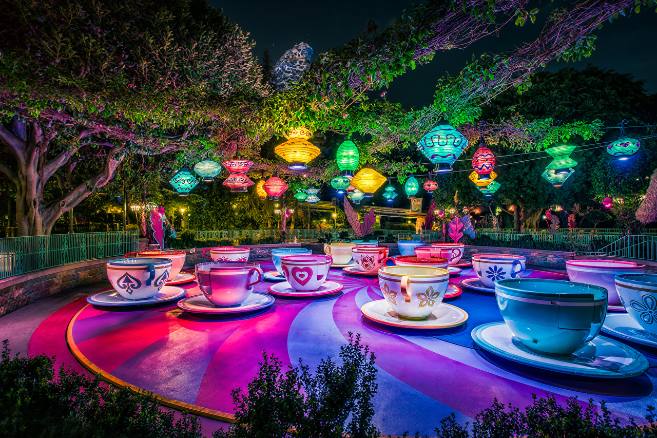 Pictures Anaheim California Disneyland USA Nature Parks Cup night time Design Night