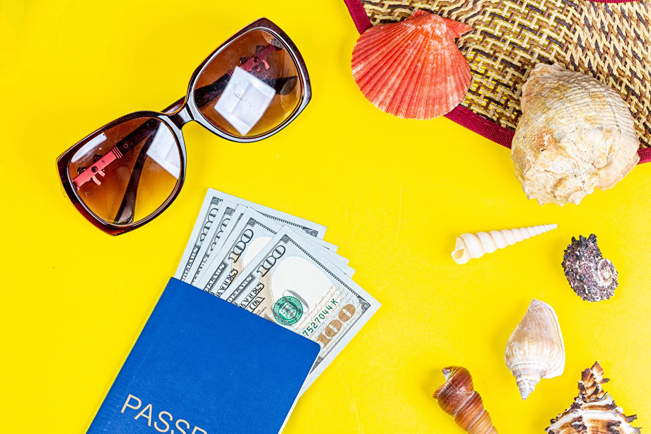 Fotos von Dollars Muscheln Geld Brille Farbigen hintergrund