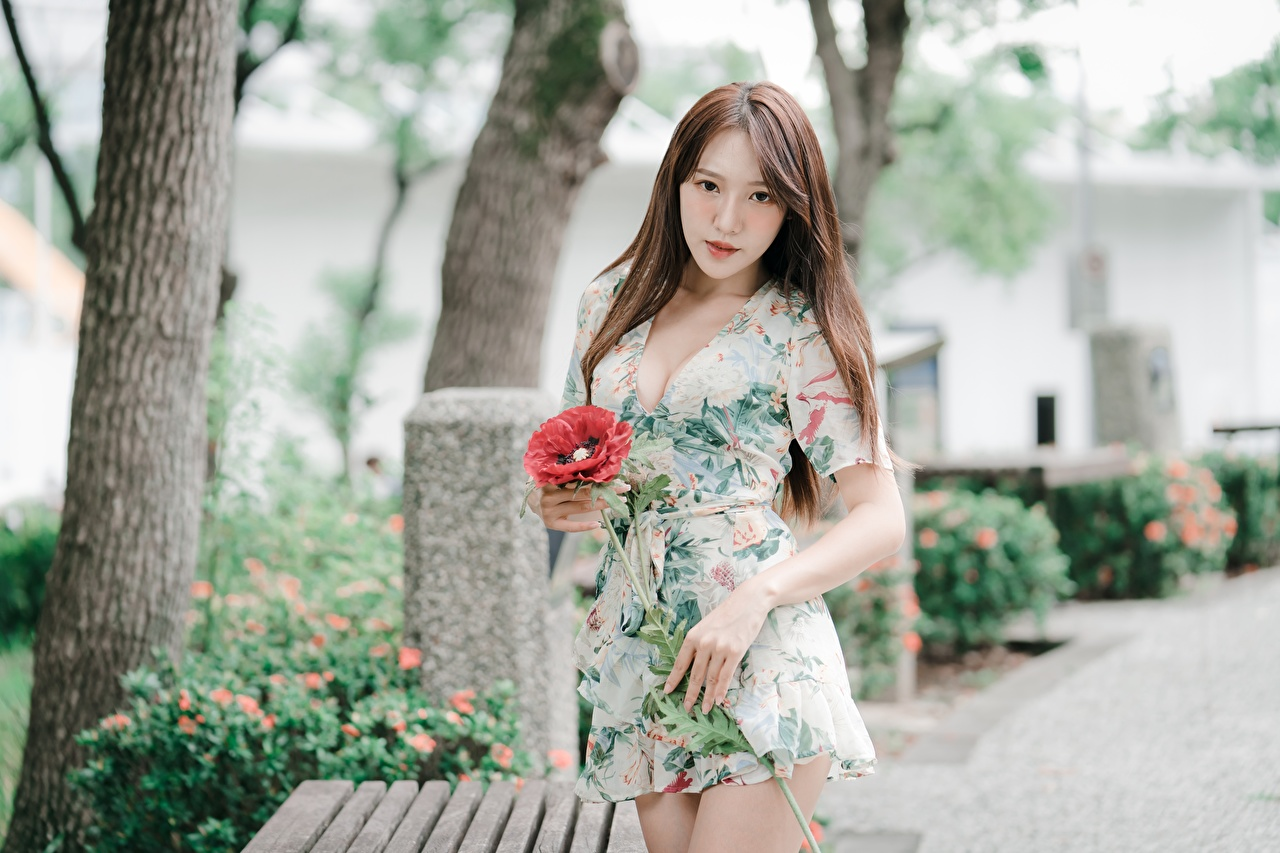 Images Brown haired Bokeh young woman Asian Hands Staring frock blurred background Girls female Asiatic Glance gown Dress