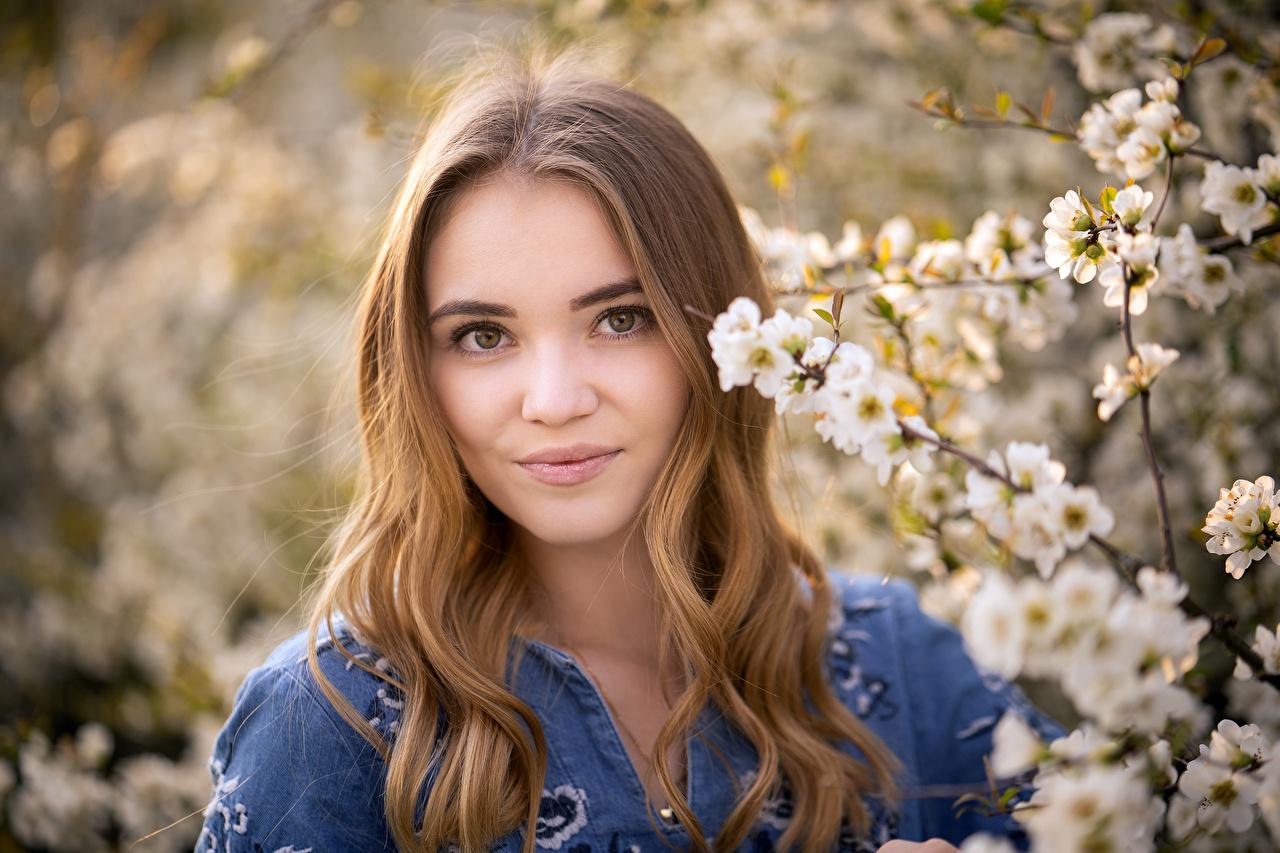 Bilder Dunkelbraun Braune Haare Lächeln unscharfer Hintergrund Haar Mädchens Blick Blühende Bäume Braunhaarige Bokeh junge frau junge Frauen Starren