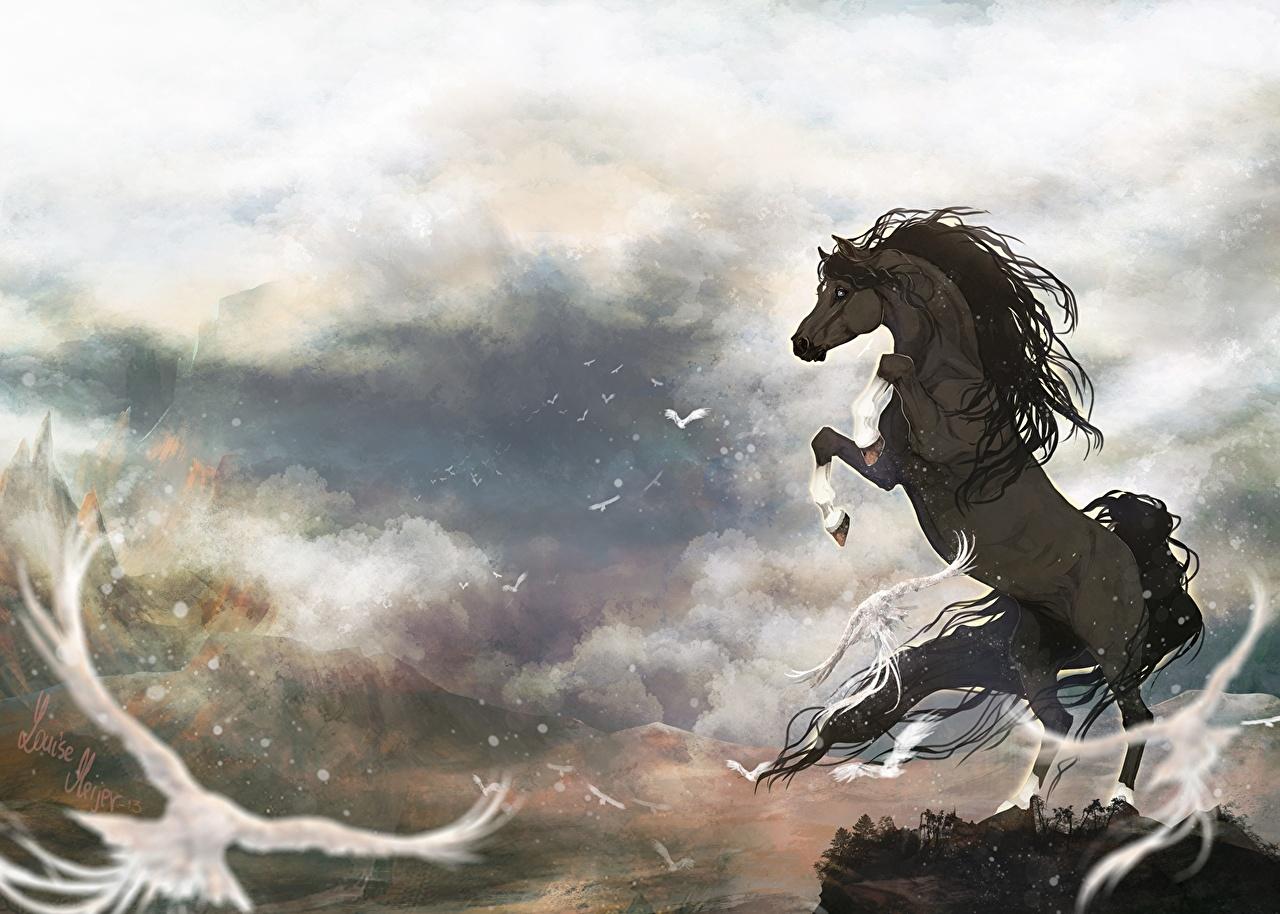 Fonds d'ecran Cheval Spirit, l'étalon des plaines Dessins animés Animaux télécharger photo