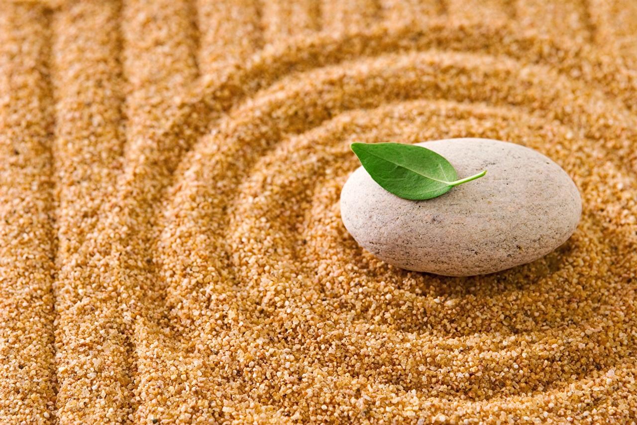 Bilder von Kreise zen Sand Steine hautnah Kreis Stein Nahaufnahme Großansicht
